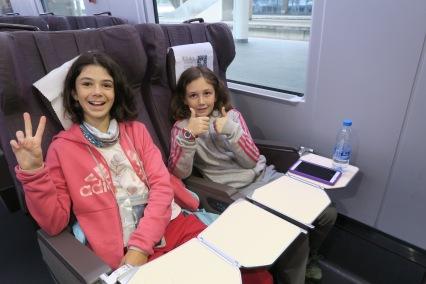 Train pour LESHAN